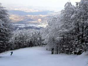 Ла Селлата приглашает кататься на лыжах