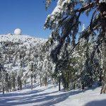 Горные лыжи на Кипре. Курорт Троодос