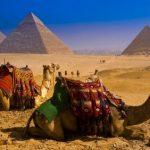 Особенности египетской национальной кухни