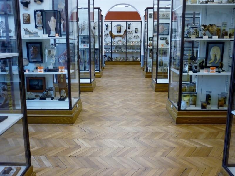 Музей парфюмерии Fragonard