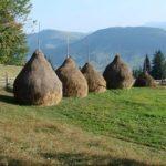 природный парк Бойковщина